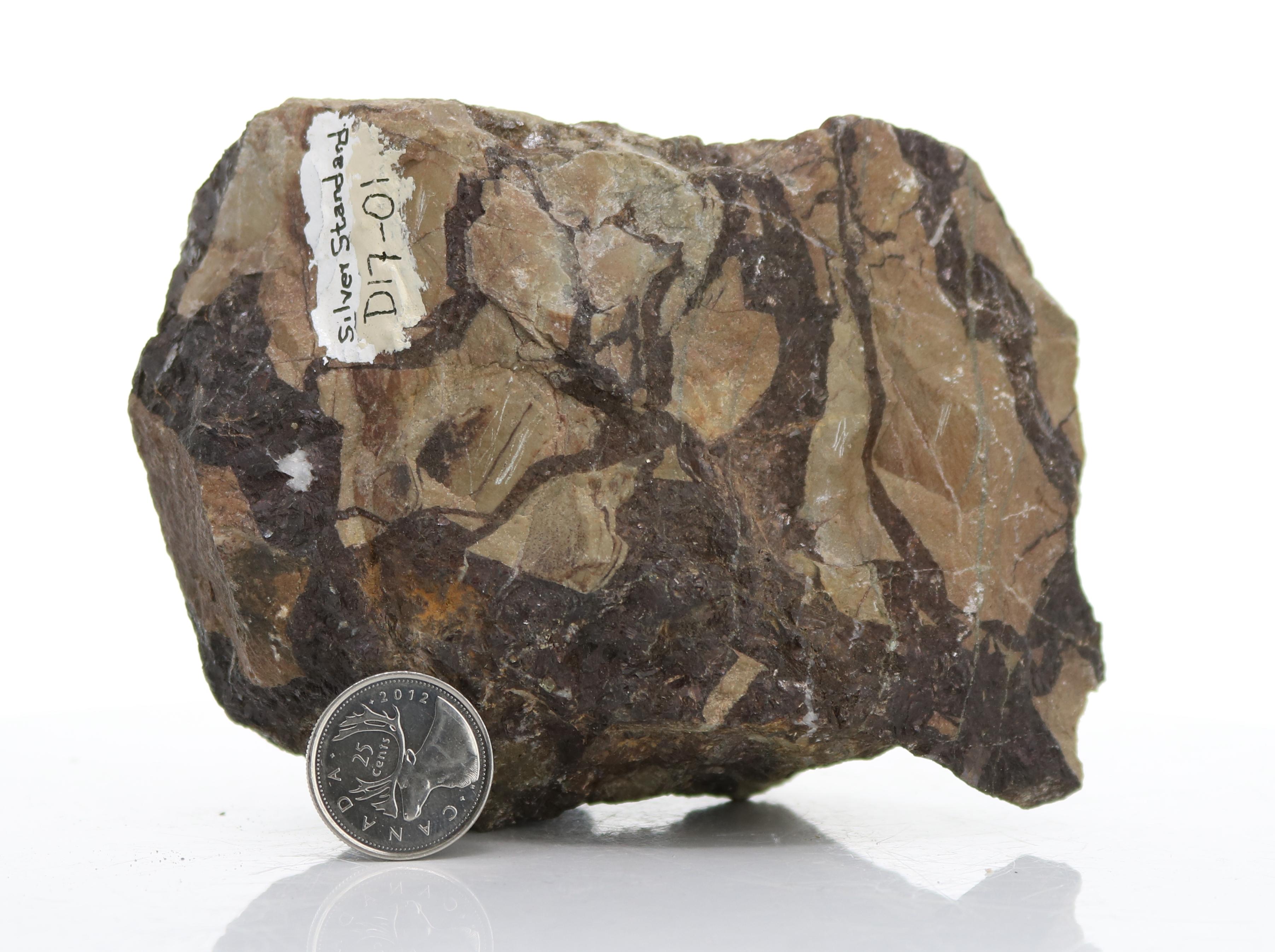 Siberite Cemented Breccia (D17-01) Image