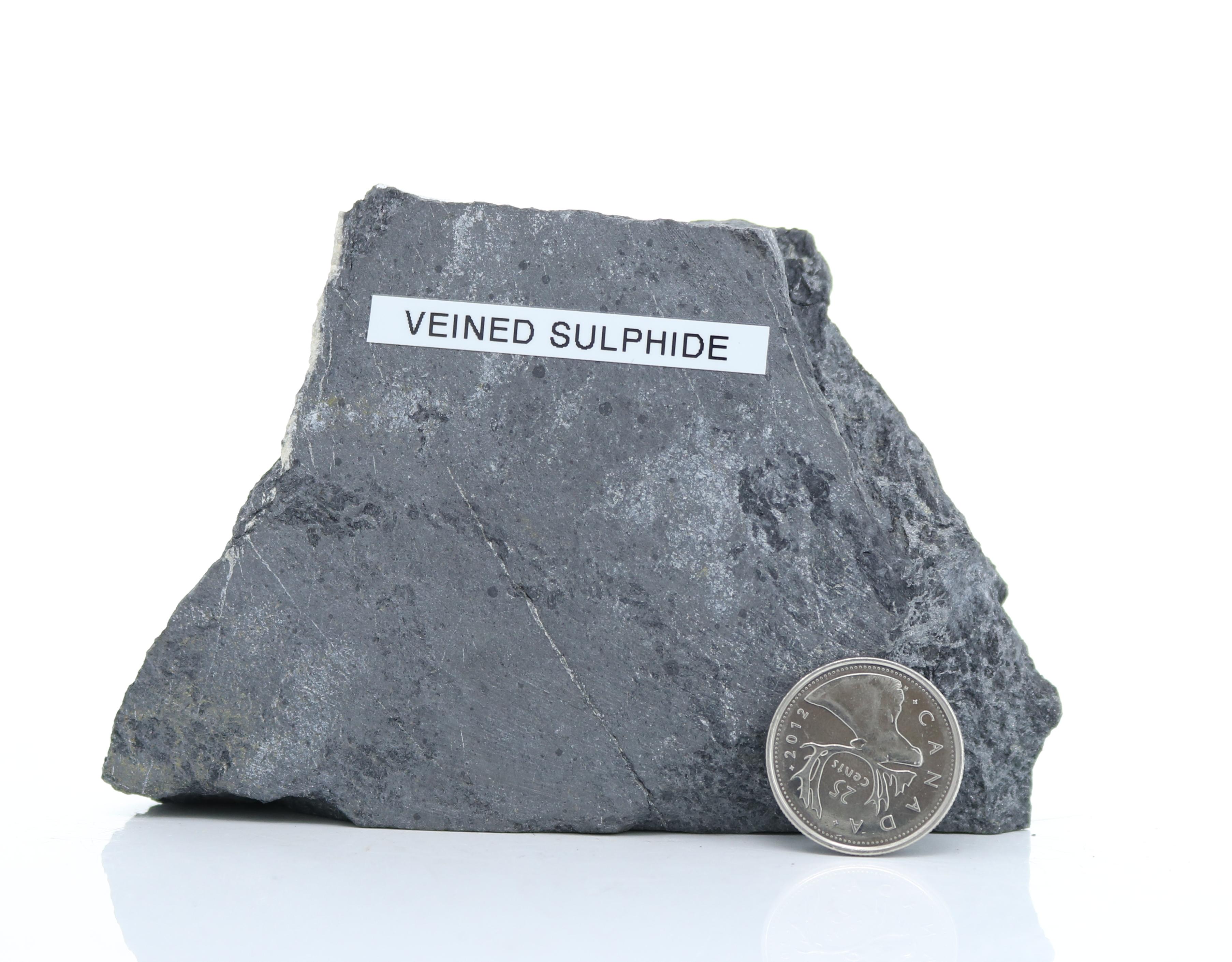Veined Sulphide (MoM-003) Image