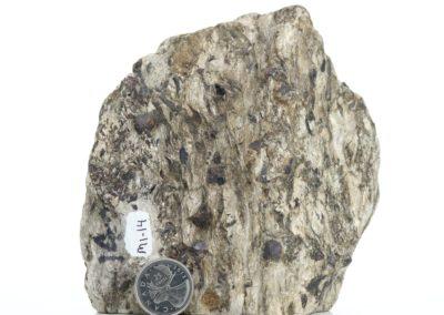 Garnet-Staurolite-Muscovite Schist (M1-14)