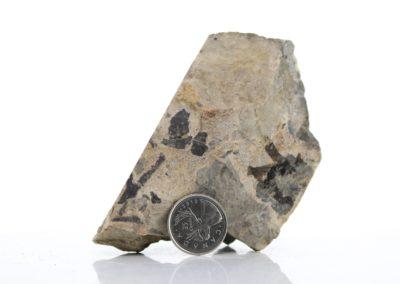 Rhyolite Breccia (V2-16a)